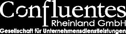 Confluentes Rheinland GmbH Проектный менеджмент | Инвестиции | Торговля | Логистика
